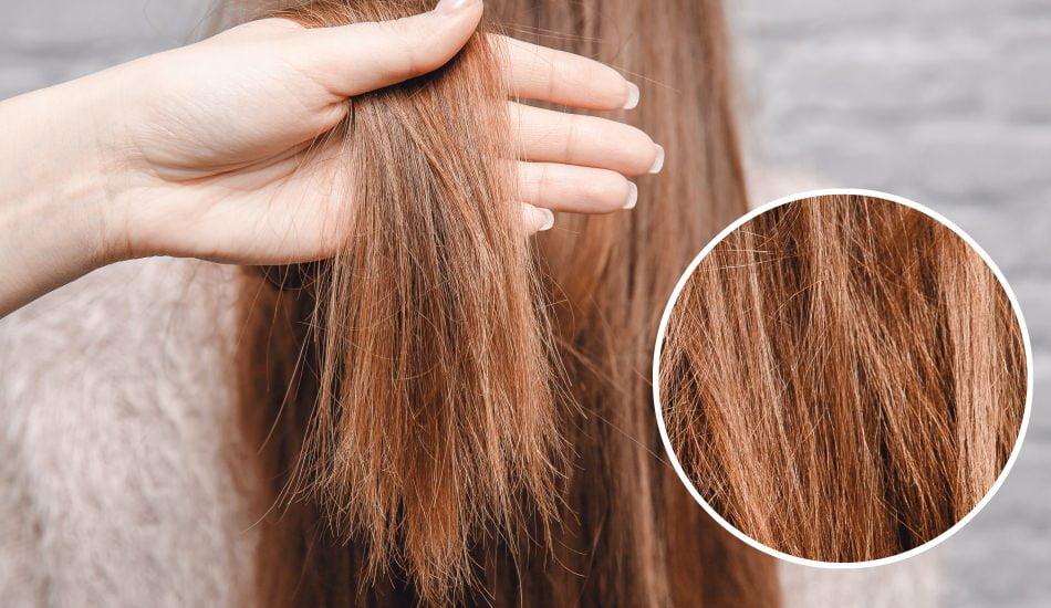 Kuru Ve Cansız Saçları Onaran Doğal Yöntemler - Cilt Güzellik